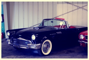 Ford Thunderbird (1)