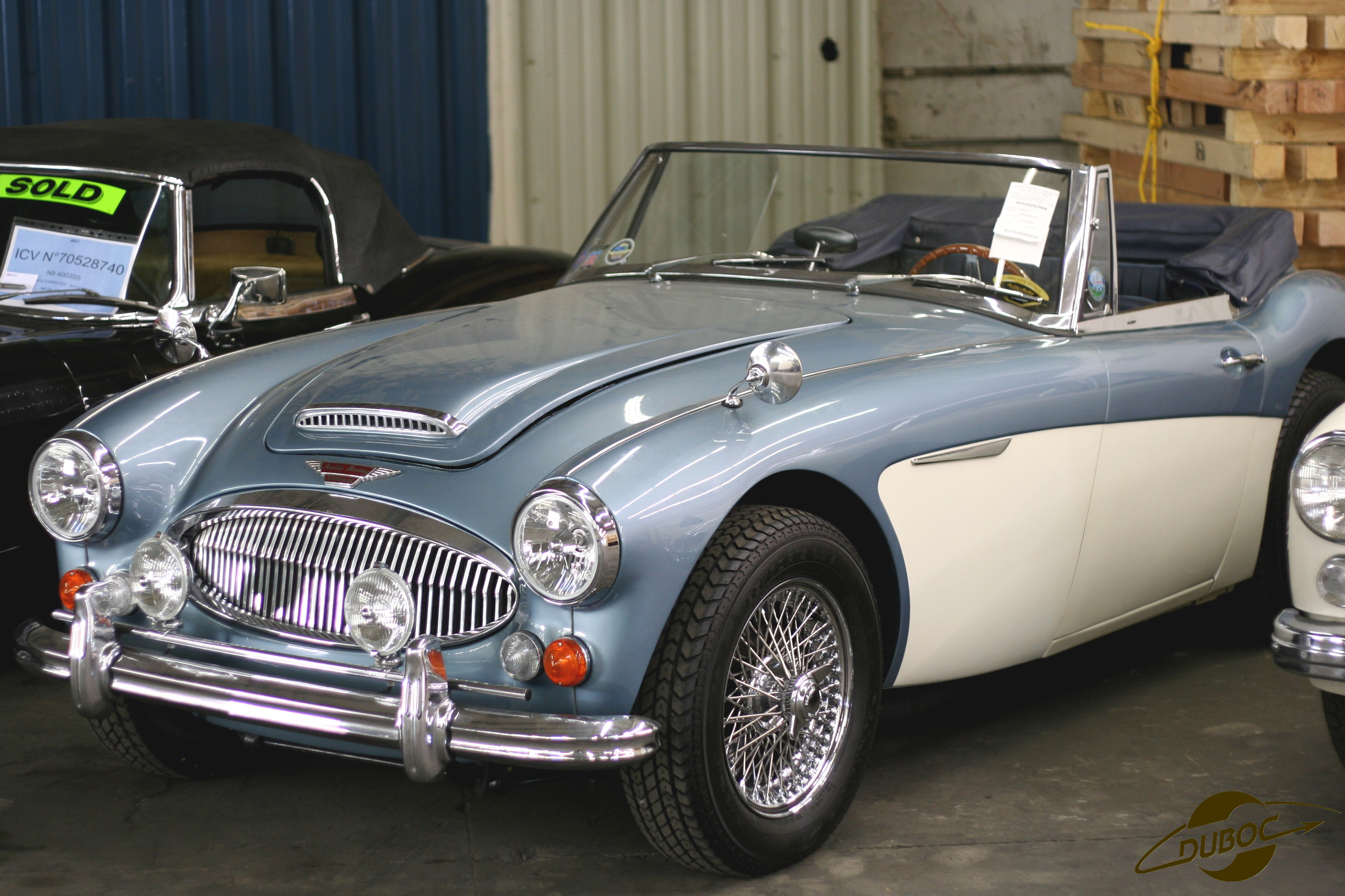 une s lection de photos d di es aux austin healey import. Black Bedroom Furniture Sets. Home Design Ideas