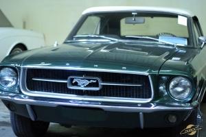 Mustang verte